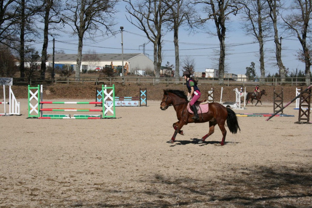poney ussel