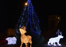 Noel2015_Illuminations-hopital